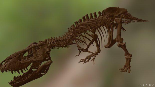 Trix T Rex scan case study