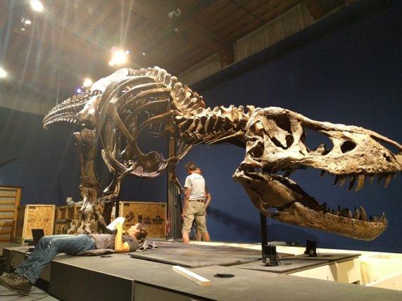Trix T Rex