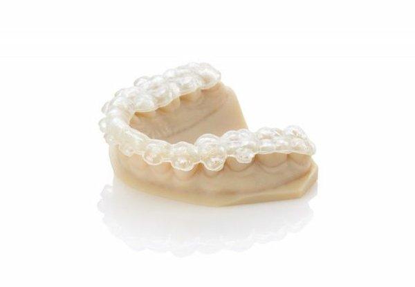 dental-model.jpg
