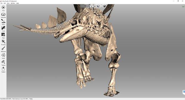 Kessler Stegosaurus in Artec Studio