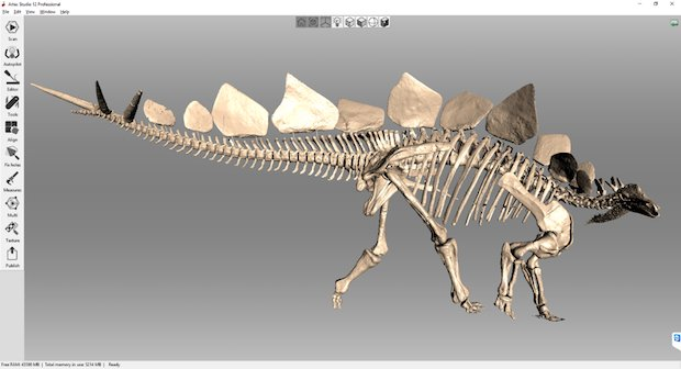 The final model of the Kessler Stegosaurus in Artec Studio, side view