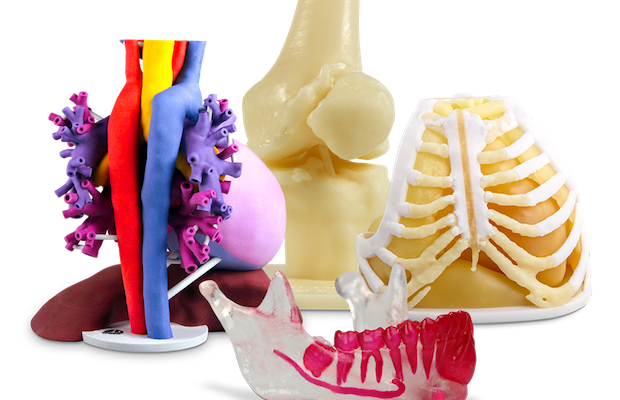 11178 Anatomical Modeling On Demand.png
