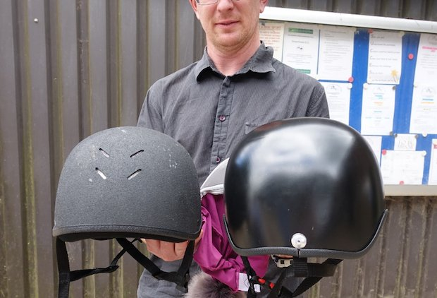 Artec horse riding helmet