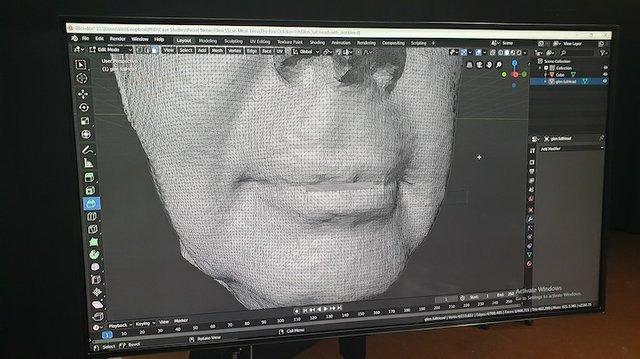 Modelling inside the Artec Studio software. Facial nerve