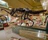 Smithsonian dinosaur hall