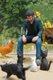 Keanu the Animal Lover.jpg