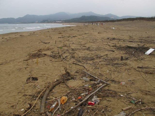 Taiwanese beaches are littered with plastic beverage cups