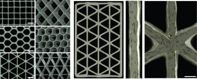 Variety of 3D-printed Honeycomb Structures