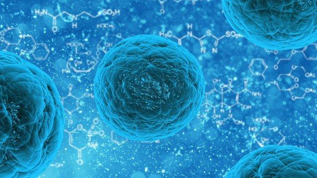 stem-cell-163711_1280.jpg