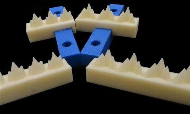 3D-printed mammal teeth